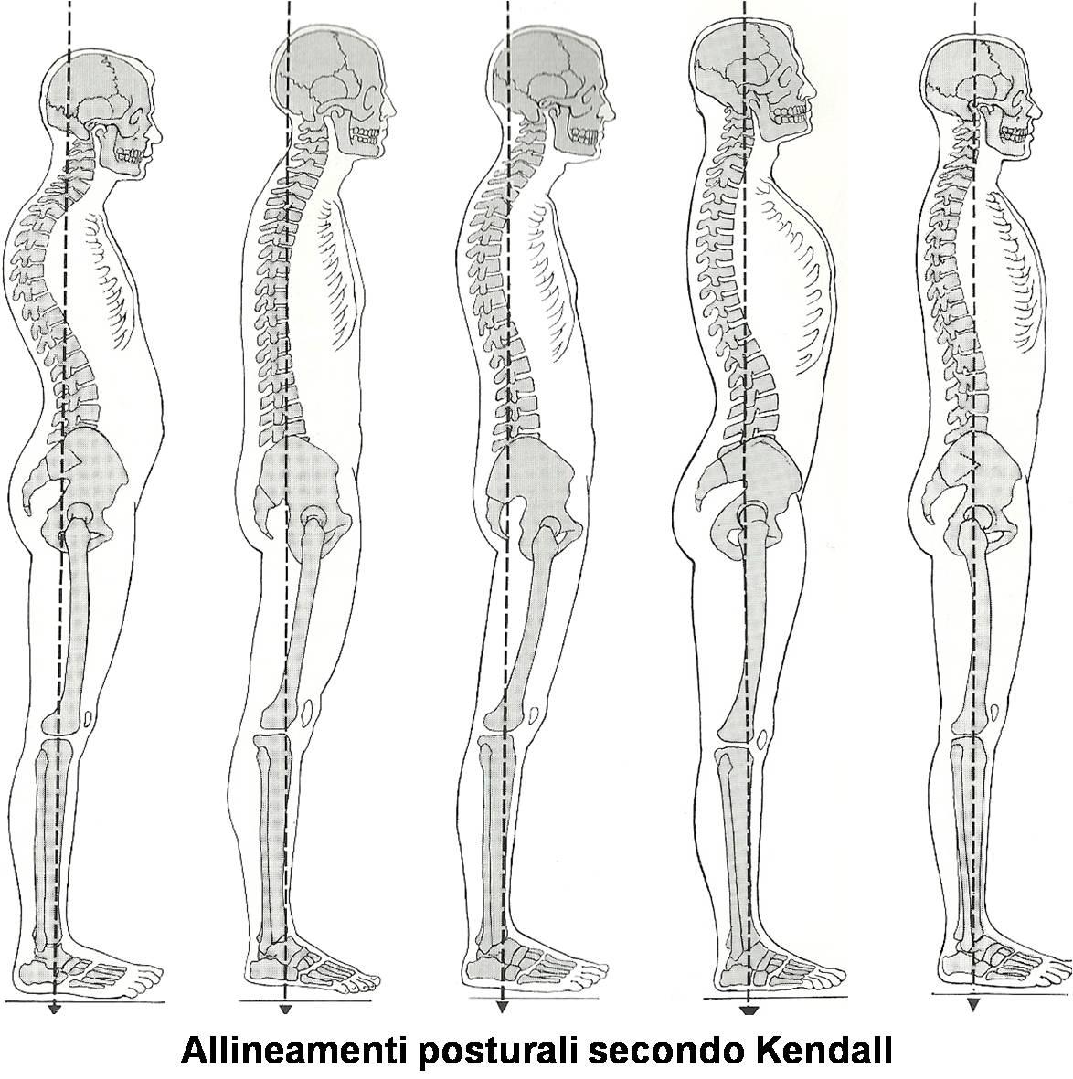 Allineamenti posturali
